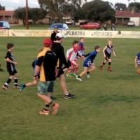 AusKick - Bunbury Bulldogs Football Club Western Australia AFL